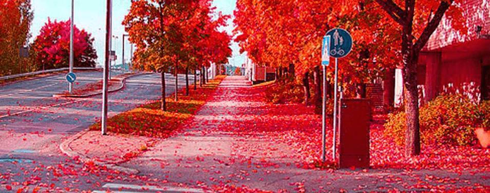 Что интересного в Финляндии осенью?